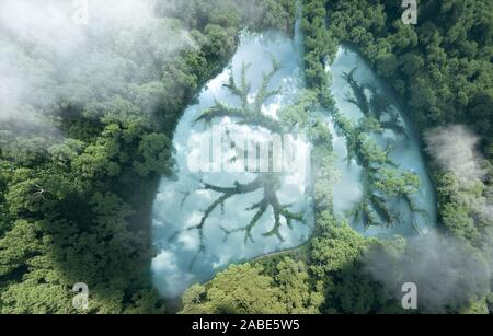 Green lungs of planet Earth. 3d rendering of a clean lake in a shape of lungs in the middle of  virgin forest. Concept of nature and rainforest protec - Stock Photo