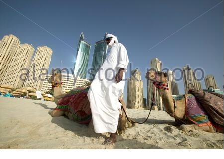 A local man and his camel on the beach in front of Jumeirah Beach residence, Dubai, UAE. - Stock Photo