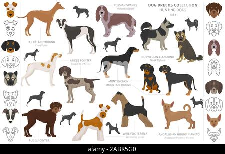Hunting dogs collection isolated on white clipart. Flat style. Different color, portraits and silhouettes. Vector illustration - Stock Photo