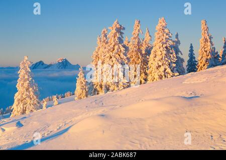 View from the Rigi to the Bernese Alps and the Pilatus in winter. Schwyz,Switzerland.. - Stock Photo