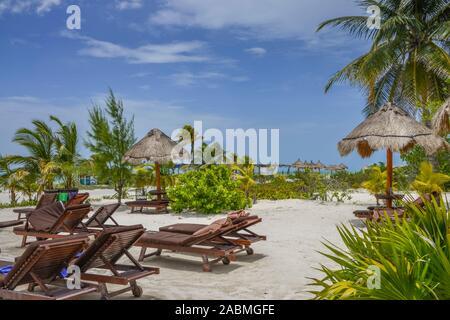 Palmenstrand, Isla Holbox, Quintana Roo, Mexiko - Stock Photo