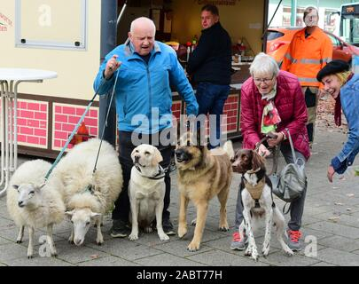 Schkeuditz, Germany. 21st Oct, 2019. Werner Dreßler stands walking his animals, dogs and sheep in front of a bratwurst stall in the city centre, whose owner brings a sausage to the dogs. The 79-year-old master toolmaker takes the animals for a walk in the city every day and is an eye-catcher for locals and visitors alike. Credit: Waltraud Grubitzsch/dpa-Zentralbild/ZB/dpa/Alamy Live News - Stock Photo
