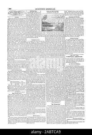 SCIENTIFIC AMERICAN. Receipts. Relief furTooth Ache. How to Color Green. Matching Fish. Curiosities of Art lilt It at Last. The Weathercock. Singular Streams. SCIENTIFIC AMERICAN: BY MUNN di COMPANY. York. THE ART OP PAINTING. Stockings the Feet &., 1847-07-03 - Stock Photo