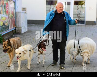 Schkeuditz, Germany. 21st Oct, 2019. Werner Dreßler walking with his animals, three dogs and two sheep in the city centre. The 79-year-old master toolmaker takes the animals for a walk in the city every day and is an eye-catcher for locals and visitors alike. Credit: Waltraud Grubitzsch/dpa-Zentralbild/ZB/dpa/Alamy Live News - Stock Photo