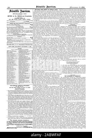 Reynolds into a triangular controversy. While he contented himself with disagreeing with Reynolds in many points he 40 4  4 04 SLADE SUSTAINED So ow THE LEVERRIER OF CHEMISTRY., scientific american, 1876-11-18 - Stock Photo