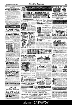 Plain Slide Valve of Su perior Design Complete in Every Respect LAMBERTVILLE IRON WORKS. LAMBERTVILLE N. J. CIRCULAR AND PRICE LIST. RUBBER BACK SQUARE PACKING BEST IN THE WORLD. NEW YORK BELTINC & PACKINC CO. BLAKE'S CHALLENGE' ROCK BREAKER. Patented November 15 1879., scientific american, 1883-11-10 - Stock Photo