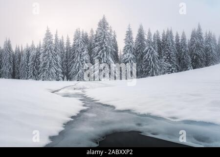Fantastic winter landscape with frozen river and snowy trees in foggy mountains. Carpathian mountains, Ukraine, Europe. Christmas holiday concept - Stock Photo