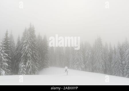 Fantastic winter landscape with snowy trees in foggy mountains. Carpathian mountains, Ukraine, Europe. Christmas holiday concept - Stock Photo