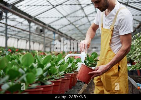 Checking the soil with little shovel. I am a gardener in yellow and white wearing green plants in vases - Stock Photo