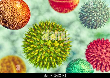 Pollen grains from different plants, illustration