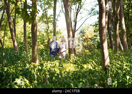 happy senior couple walking talking chatting relaxing in woods