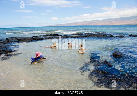 A young girl with arm floaties plays with a young boy while their mothers look on in a tide pool at Puako, South Kohala, Big Island. - Stock Photo