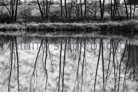 Reflections in black and white on a winter's day in Germany