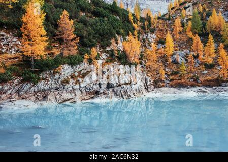 Autumn day in the majestic mountains. Yellow colored trees on the rocks. Beautiful blue crystal lake - Stock Photo