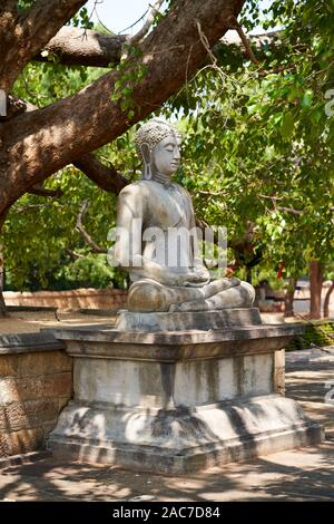 A sitting buddha meditating under a tree in Anuradhapura, Sri Lanka - Stock Photo