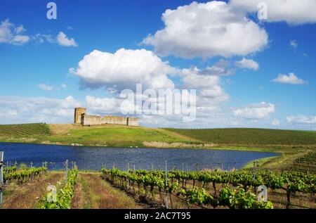 vineyard and Valongo castle, alentejo region, Portugal - Stock Photo
