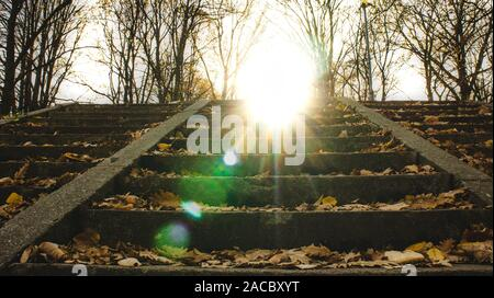 Park stairs with sun flares in autumn season. - Stock Photo