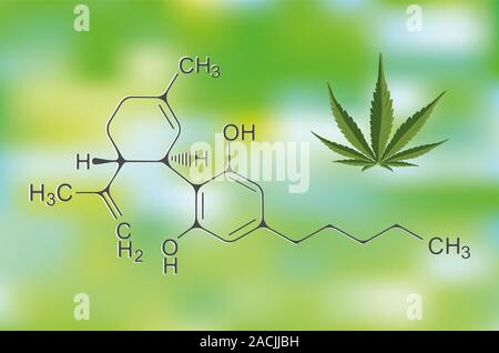 CBD Cannabis Formula. Structural model of cannabidiol and tetrahydrocannabinol molecule. Medicinal hemp. Medical marijuana, despancery business, canna - Stock Photo