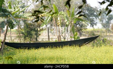 The Old Wooden Canal Boat near saltwater water canal of Ganges river delta in the beautiful mangrove forest of Sundarban West Bengal India South Asia - Stock Photo