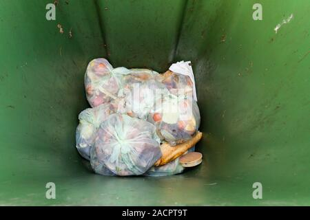 Recyclable, compostable food waste in compostable bags placed in the bottom of a green wheelie bin for kerbside collection. - Stock Photo