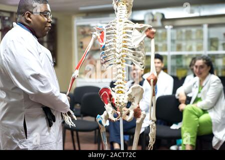 doctors of mixed race, of different sexes, in the study room, study human anatomy, on the skeleton. Young medical students at medical university - Stock Photo
