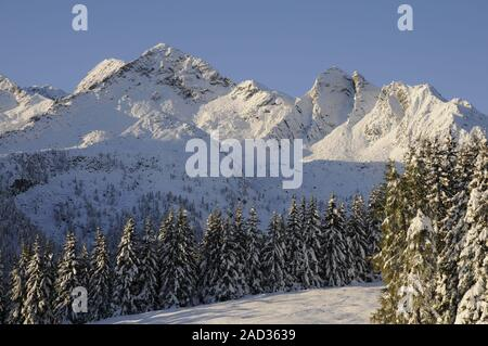 Winter at Hochkrimml - Stock Photo