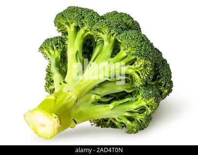 Large inflorescences of fresh broccoli bottom view - Stock Photo