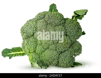 Large inflorescences of fresh broccoli with leaves top view - Stock Photo