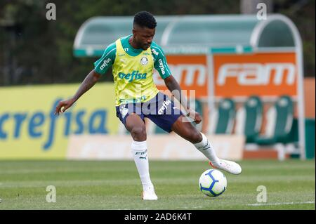 Sao Paulo, Brazil. 03rd Dec, 2019. Ramires during Palmeiras training held at the Football Academy located in the Barra Funda neighborhood in São Paulo (SP). Credit: Foto Arena LTDA/Alamy Live News - Stock Photo
