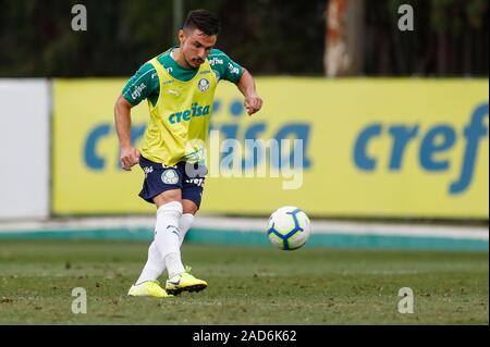 Sao Paulo, Brazil. 03rd Dec, 2019. Willian during training of Palmeiras held at the Football Academy located in the neighborhood of Barra Funda in Sao Paulo (SP). Credit: Foto Arena LTDA/Alamy Live News - Stock Photo