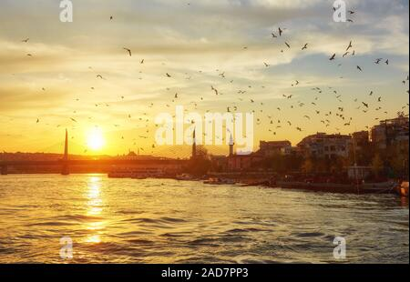 Sunset in Istanbul with sea and seagulls - Stock Photo