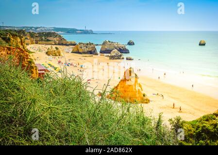 View from above to the beach in Portugal. Shallow depth of field. Focus on the green bush