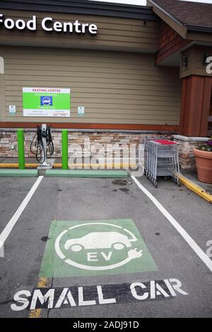 empty electric vehicle parking spot outside a food centre/grocery store with charging station and green paint on the pavement.