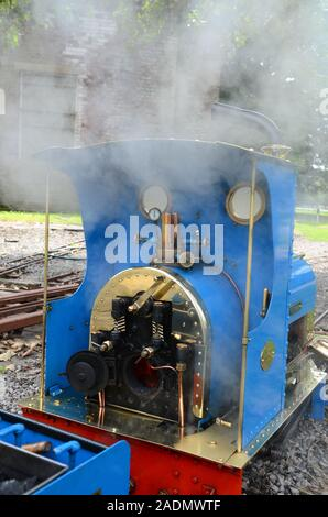 narrow gauge railway, small steam train - Stock Photo