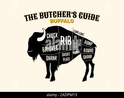 Buffalo cutting charts vector horizontal poster illustration for butchers shop guide. Label for farm design - Stock Photo