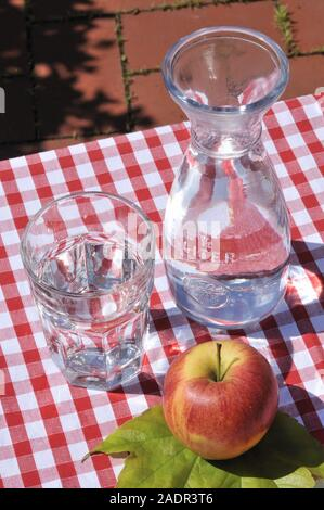 Wien, beim Heurigen, Stillife - Stock Photo
