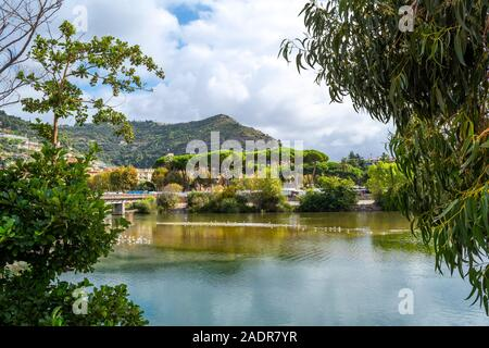 The bridge over the River Roia, filled with seagulls and ducks with the Italian village of Ventimiglia behind on the Italian Riviera. - Stock Photo