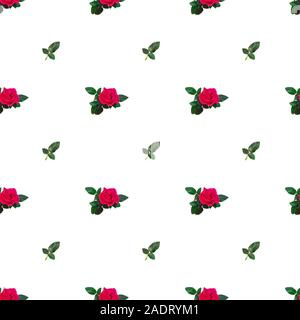 Colorful Seamless pattern with pink roses and rose petals - Stock Photo