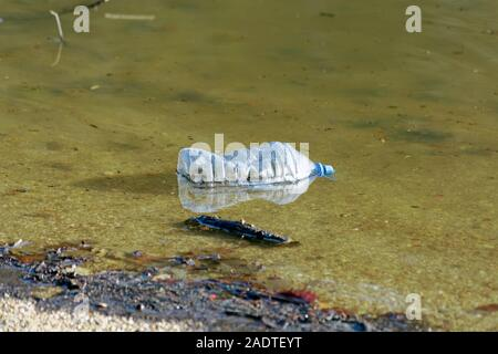 Plastic mineral water bottle junk floating on water in nature. Belgrad Forest in Istanbul of Turkey. - Stock Photo