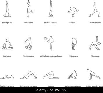 siddhasana yoga position linear icon thin line