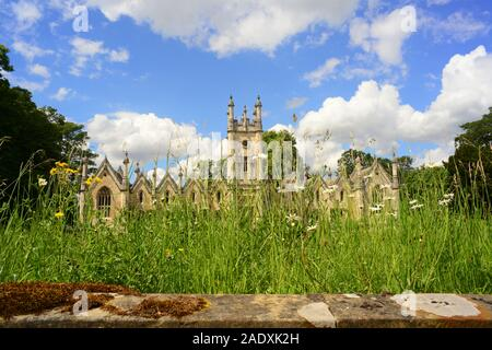 wild flowers by aberford almshouses designed by george fowler built in 1844 by Elizabeth and Mary Isabella Gascoigne Aberford yorkshire uk - Stock Photo