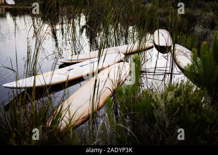 Windsurfer boards used for sunbathing platforms and flotation devices  near Stanford in South Africa's Overberg region in the Western Cape - Stock Photo