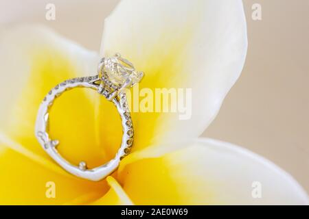 Diamond Ring Posed On Top Of Beautiful Plumeria Flower - Stock Photo