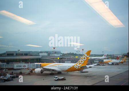 06.12.2019, Singapore, Republic of Singapore, Asia - A Scoot Airline Boeing 787-8 Dreamliner passenger plane at Changi Airport. - Stock Photo