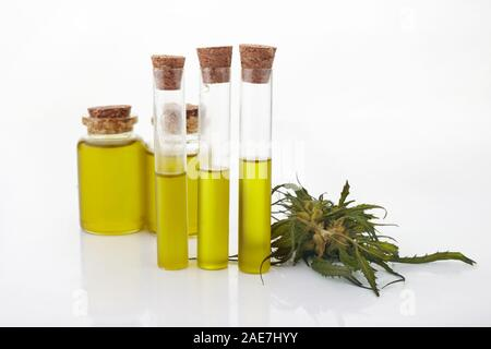 cannabis CBD oil hemp products on white background - Stock Photo