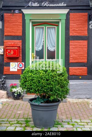 Pot plant in front of traditional red brick and timber frame building in Hitzacker Lower Saxony Germany. - Stock Photo