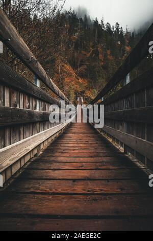 suspension bridge and foggy autumn forest - Stock Photo