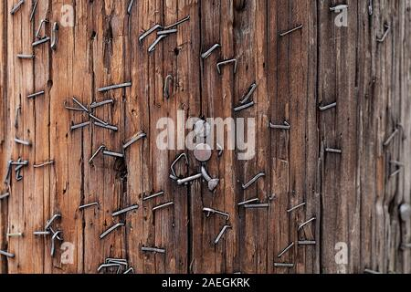 A lot of nails and staples driven into a telephone pole in Astoria, Queens, New York City, USA. - Stock Photo