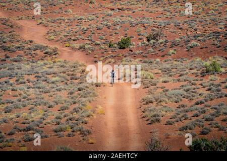 Mountain biker on the White Rim Trail, Canyolands National Park. - Stock Photo