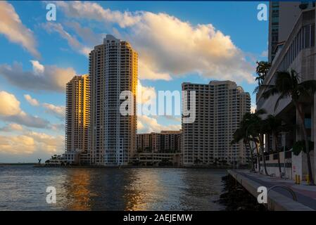 Riverside Walk, Miami, with palm trees and tall buildings reflecting in still water of the bay - Stock Photo